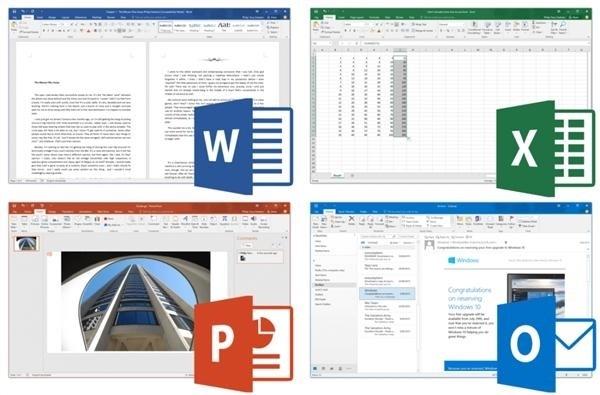Microsoft Office 2019 16.30 VL for Mac 中文大客户永久激活破解版办公软件插图