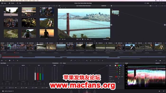 Blackmagic Design DaVinci Resolve Studio 16.0.0 Fina 破解版 Mac 调色软件插图